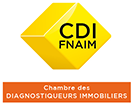 Diagnostic immobilier Lyon